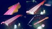 Guitare éléctrique en bois pour enfants - par Raphy's toll