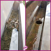Nettoyage cheneaux toiture